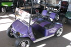 Plum Crazy Purple TXT Custom