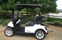 2016 E-Z-GO RXV TUXEDO
